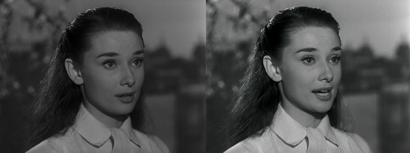 Roman Holiday on iTunes HD Review - Not on Blu-ray