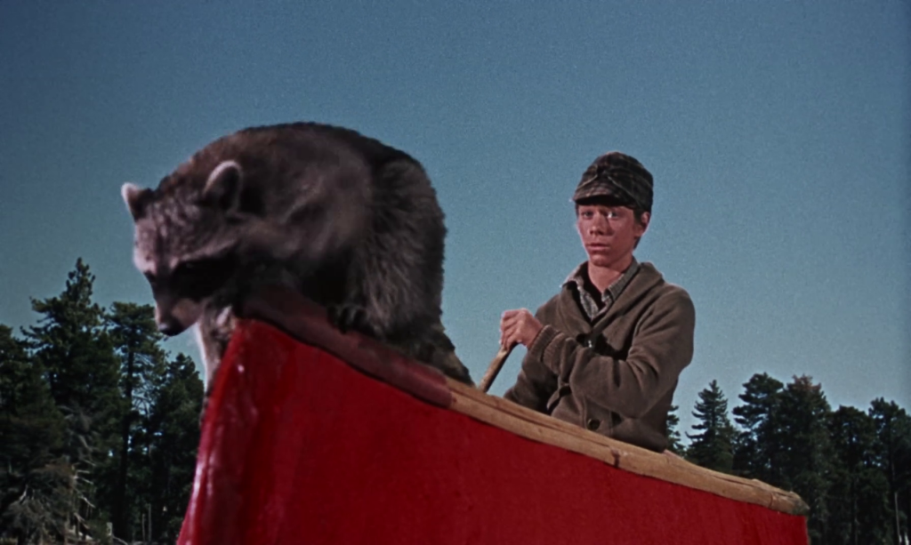Rascal, Disney 1969 - Bill Mumy Canoe and Racoon